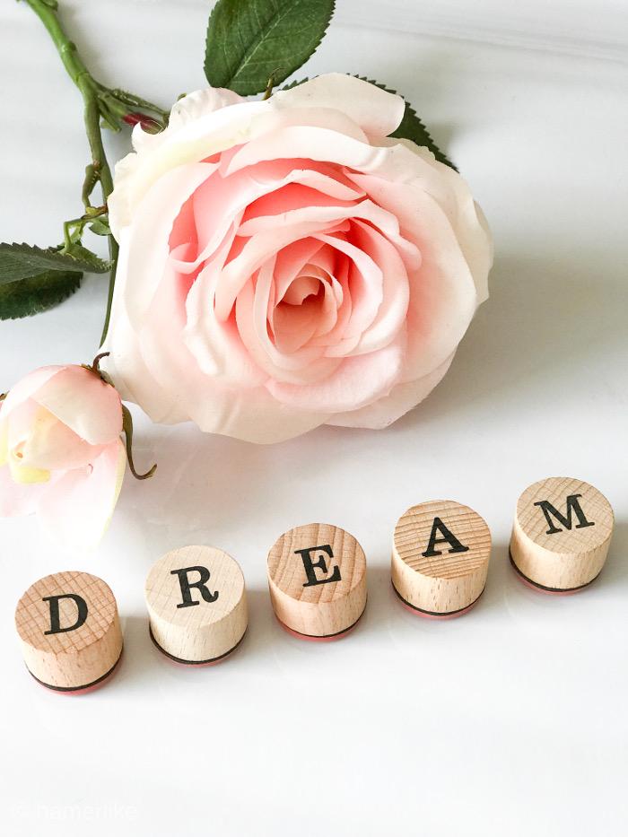 Zur Leidenschaft gehört: Dream - Träume!